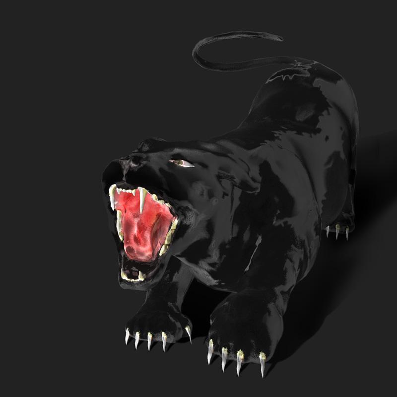 Panther CGI Illustration